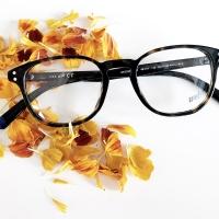 occhiali-da-vista-web-eyewear-ottica-lariana-como-22