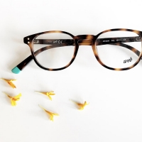 occhiali-da-vista-web-eyewear-ottica-lariana-como-27